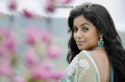 Tamil Actress Poorna Photo