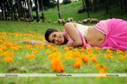 Tamil Actress Poorna Photo6