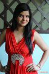 Actress Preethi Das 4919