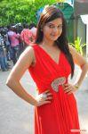 Actress Preethi Das Stills 828