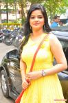 Preethi Das Stills 5271