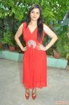 Tamil Actress Preethi Das 2802