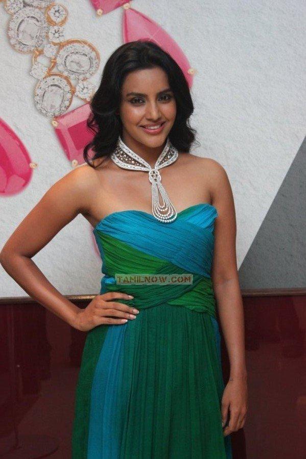 Actress Priya Anand 7244