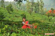 Actress Priya Anand Stills 9011
