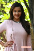 Cinema Actress Priya Anand 2017 Pictures 3140
