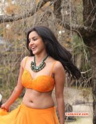 Latest Album Priya Anand Tamil Movie Actress 6543
