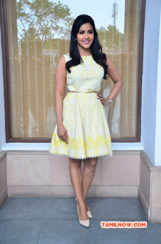 Movie Actress Priya Anand Latest Pic 2445