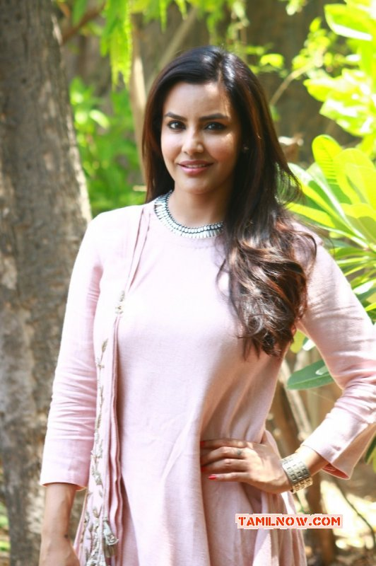 New Photos Priya Anand Tamil Actress 8120
