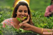 Priya Anand 2716