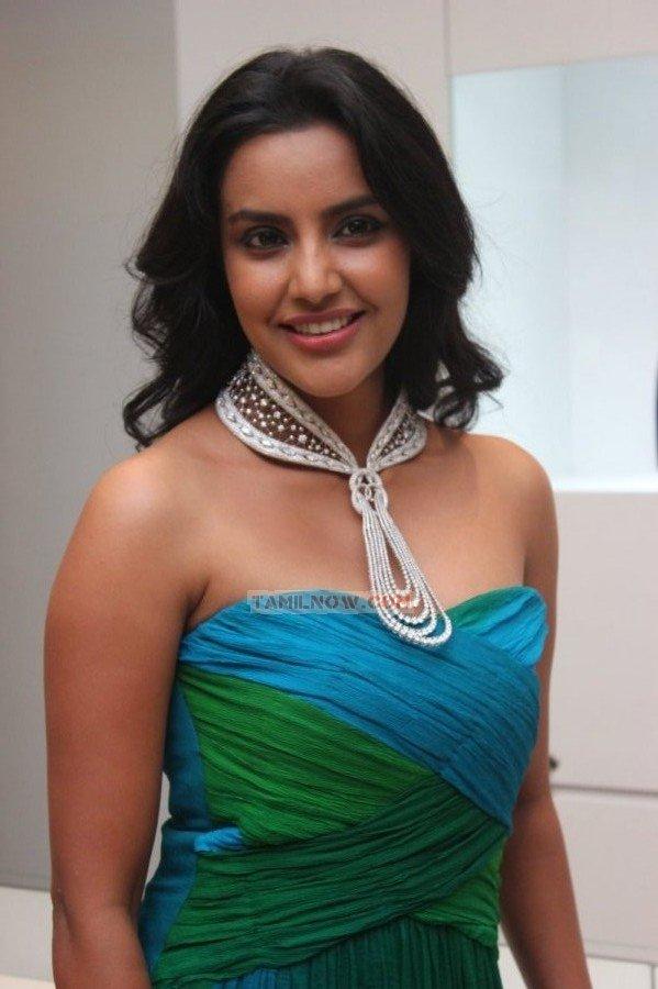 Priya Anand 4524