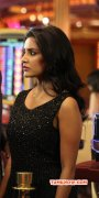 Priya Anand Film Actress Photos 258