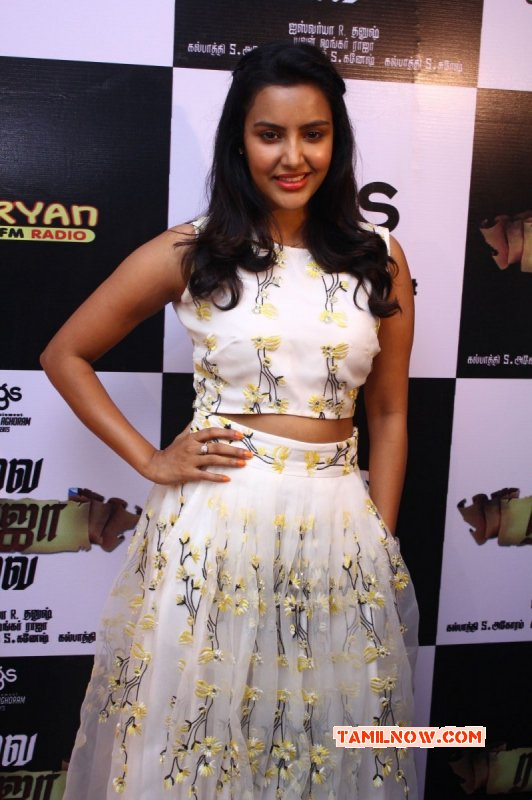 Priya Anand Heroine Latest Images 5561
