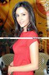 Priya Anand New Stills 2