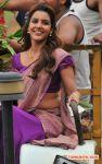 Priya Anand Photos 3881