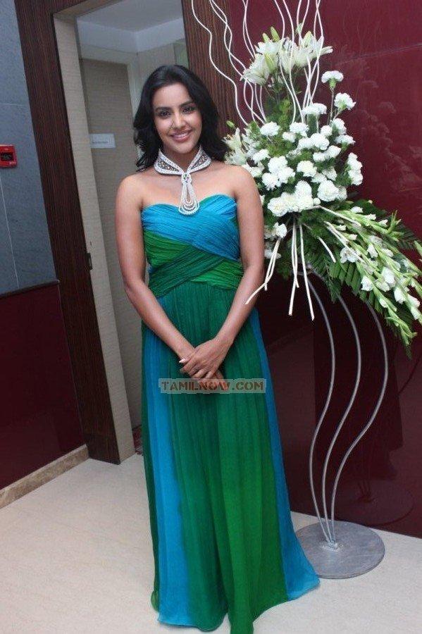 Priya Anand Stills 9691