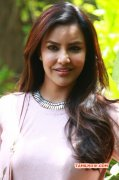 Priya Anand Tamil Actress Aug 2017 Album 7684
