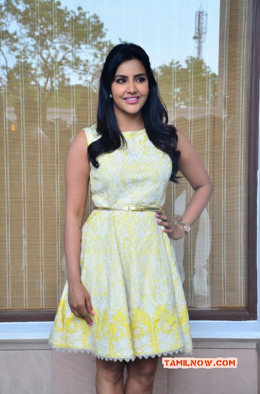 Recent Images Priya Anand Film Actress 7554