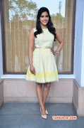 Recent Images Tamil Heroine Priya Anand 5155