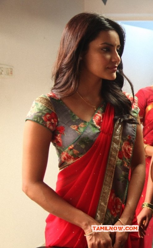 Recent Photo Priya Anand Tamil Heroine 7110