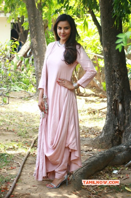 South Actress Priya Anand Pictures 4443