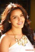 Tamil Actress Priya Anand 6391