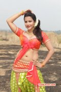 Tamil Actress Priya Anand New Picture 5653