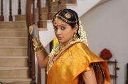 Actress Priyamani 8062