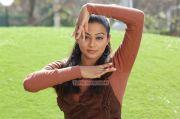 Actress Priyamani Image 291