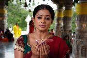 Actress Priyamani Images 378