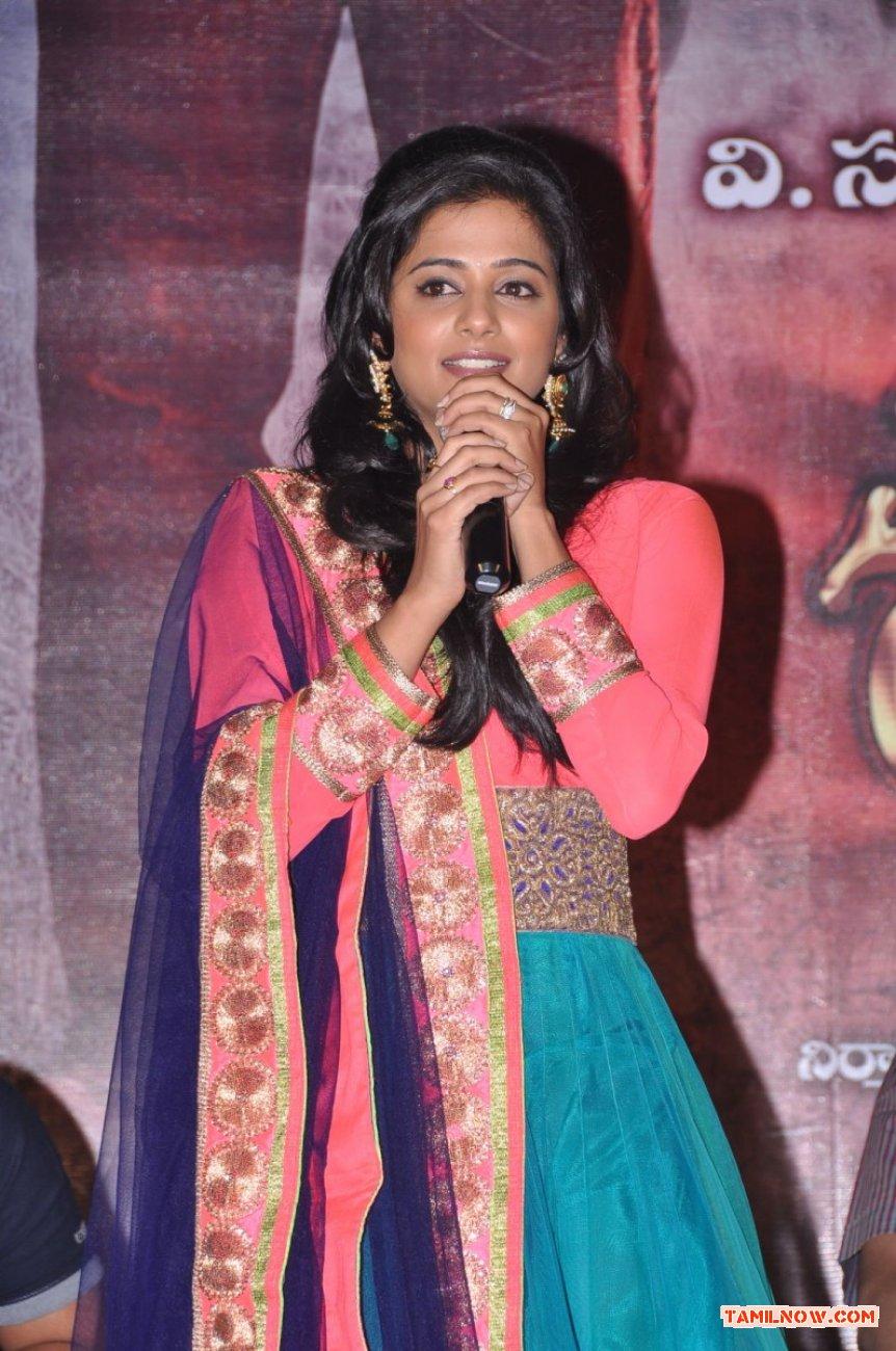 Actress Priyamani Photos 9558