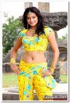 Actress Priyamani Still 02
