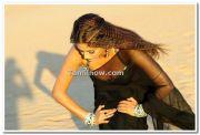 Actress Priyamani Still 9