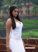 Priyamani Actress New Pictures 6370