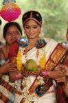 Priyamani Image 675