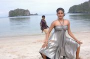 Priyamani Photo 211