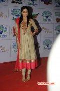Recent Picture South Actress Priyamani 4237
