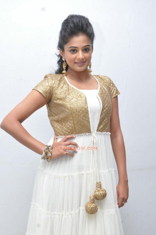 Tamil Actress Priyamani 1705