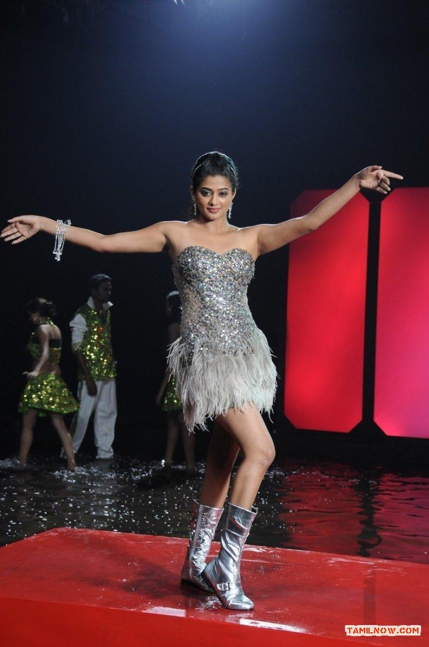 Tamil Actress Priyamani 4766