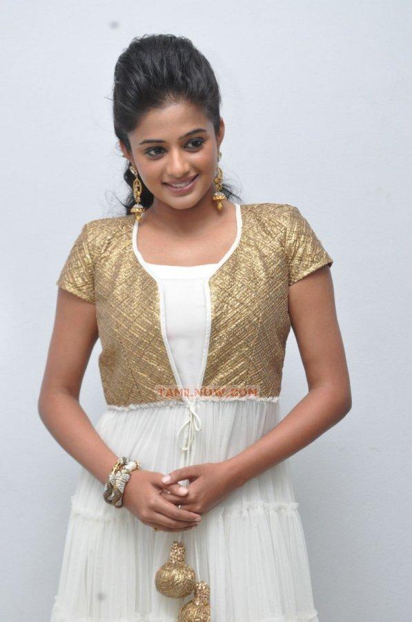 Tamil Actress Priyamani 5648