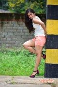 Priyanka Pallavi Recent Album 558