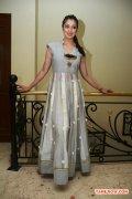 Actress Raai Laxmi 2691