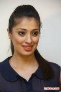 Actress Raai Laxmi Stills 7104