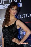 Dec 2014 Gallery Raai Laxmi Tamil Movie Actress 5888