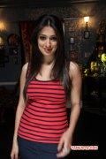 Latest Wallpapers Heroine Raai Laxmi 84