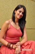 Movie Actress Raai Laxmi New Still 1104