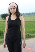 Oct 2014 Wallpaper Raai Laxmi Movie Actress 4949