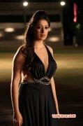 Raai Laxmi Indian Actress New Pic 4280