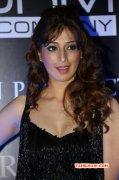 Raai Laxmi South Actress New Album 2194