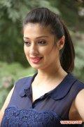 Raai Laxmi Stills 3806