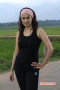 Raai Laxmi Tamil Movie Actress Recent Gallery 9101